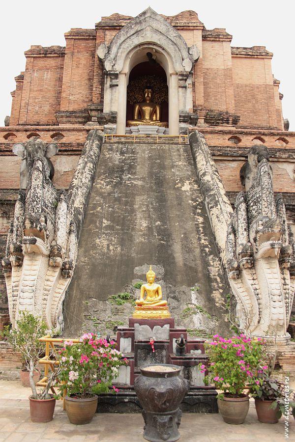 Ват Чеди Луанг Wat Chedi Luang в Чианг Мае