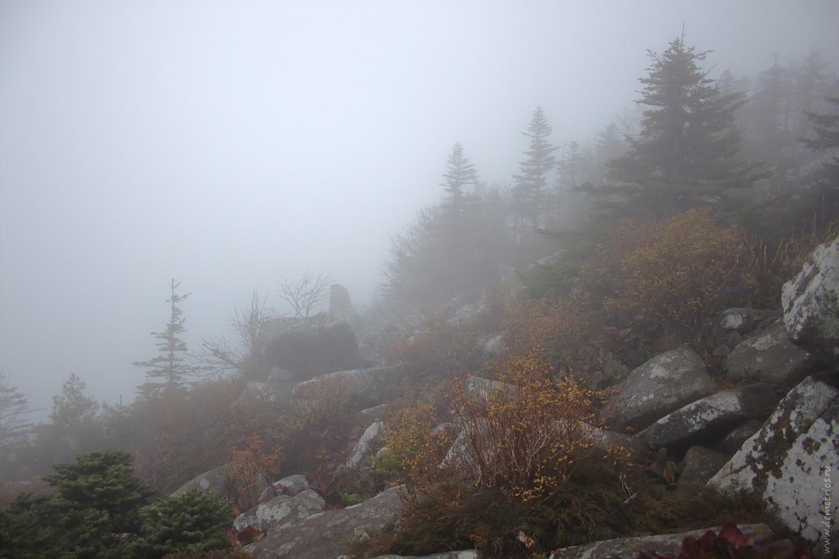 Пидан. Гора Ливадийская. Пидан в тумане