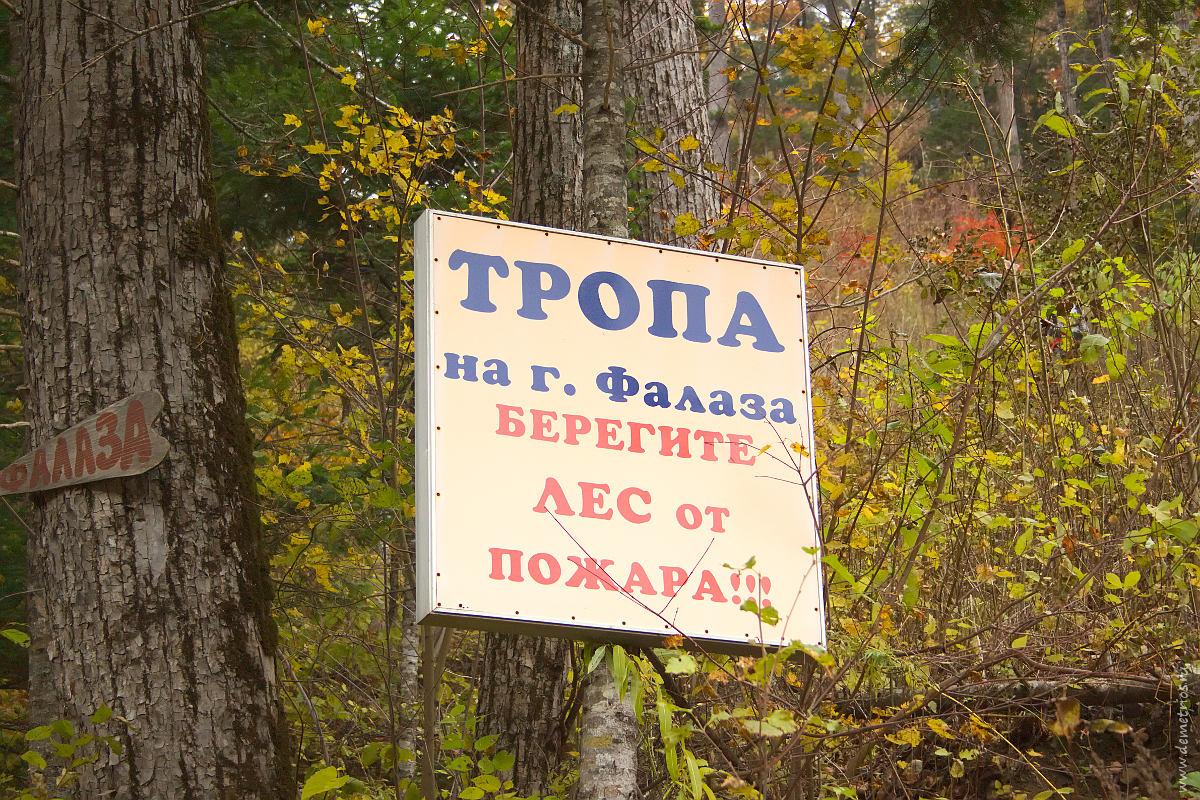 Указатель на Фалазу в Грибановке