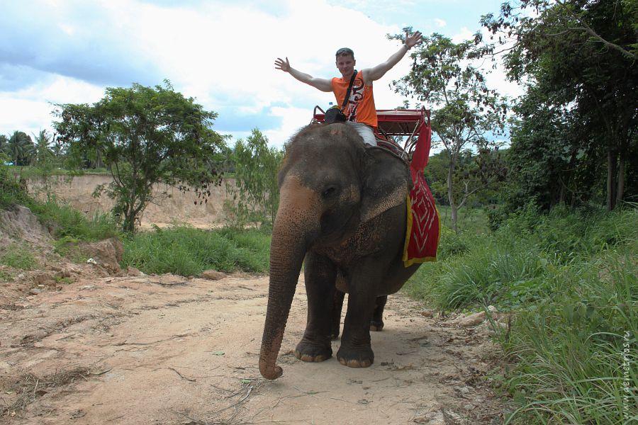 Thappraya Safari and Adventure Park Shooting Слон Elephant