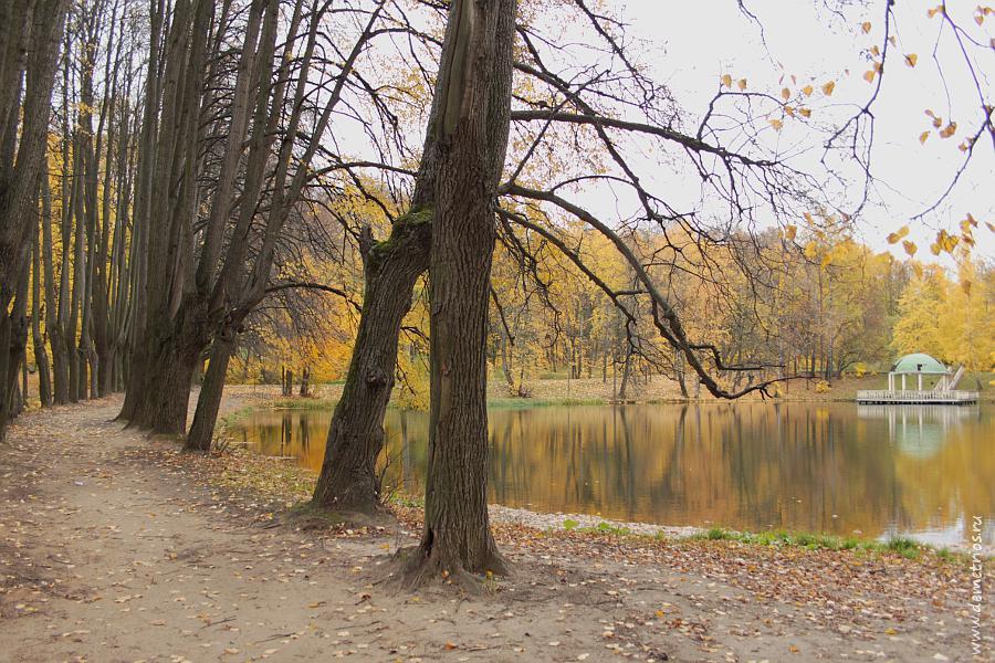 Парк в Битцевском лесу, Ясенево, Москва