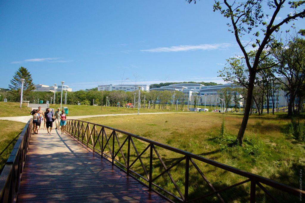 Парк кампуса ДВФУ, Владивосток, FEFU park, Vladivostok